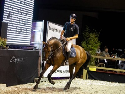 European Sport Horse Auction: 175.000 euro voor Verdi-zoon